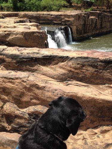 sakunothayan-falls.jpg